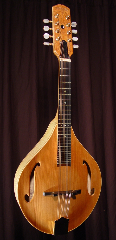 front view of michael mccarten's AF style mandolin model