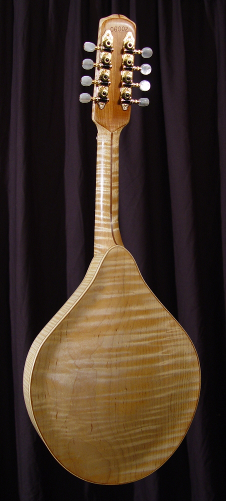 rear view of michael mccarten's AF style mandolin model