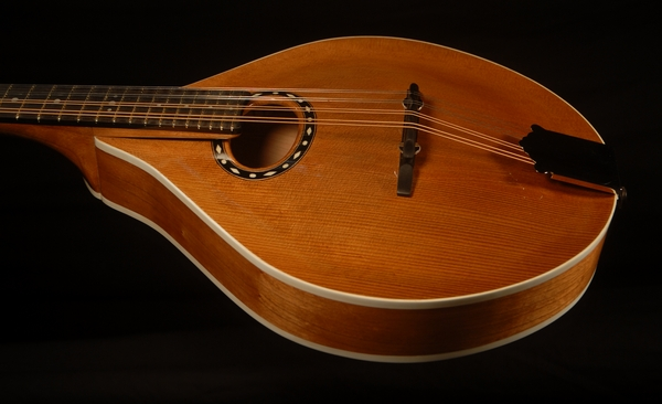 front view of the body of michael mccarten's AO style mandolin model