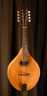 front view of michael mccarten's AO style mandolin model