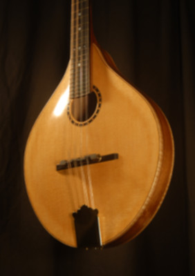 front view of the body of michael mccarten's AO sharp style mandolin model