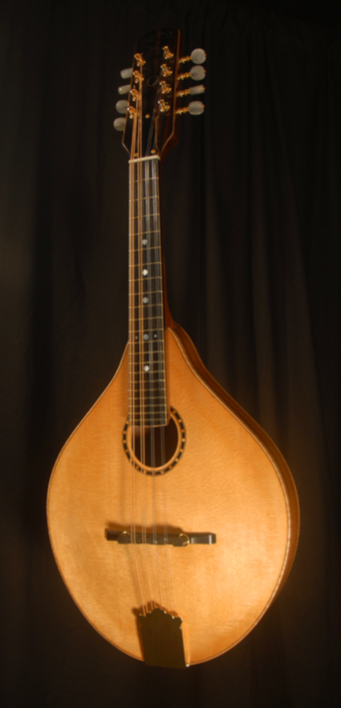 front view of michael mccarten's AO sharp style mandolin model