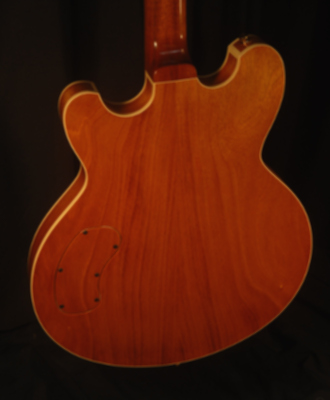 rear view of the body of michael mccarten's DC16 double cutaway semi hollow electric guitar model